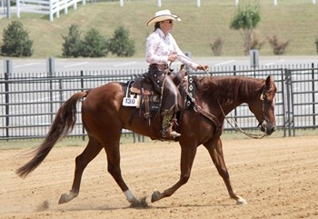 Cornerstone Horsemanship - Riding and Cow Horse Lessons